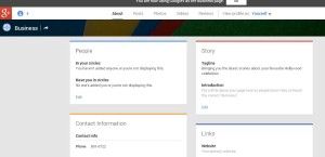 google plus business page dashboard