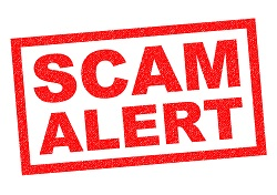 ridiculous email scams